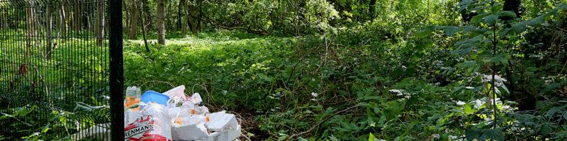 5 datos imprescindibles sobre o abandono da basura na natureza
