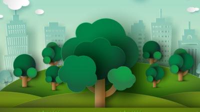 Qué é e sobre que trata a sustentabilidade.